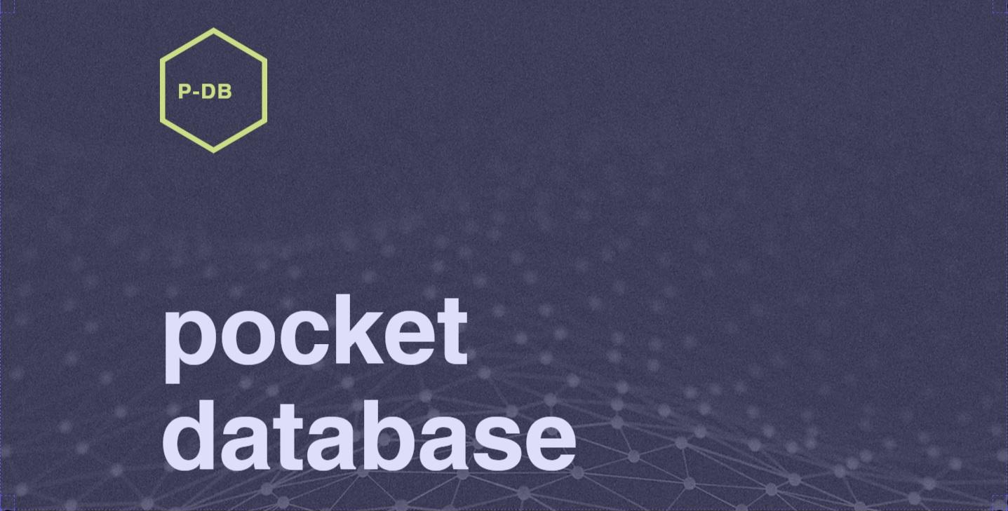 最速の商品検索ツール ポケットデータベースとは?